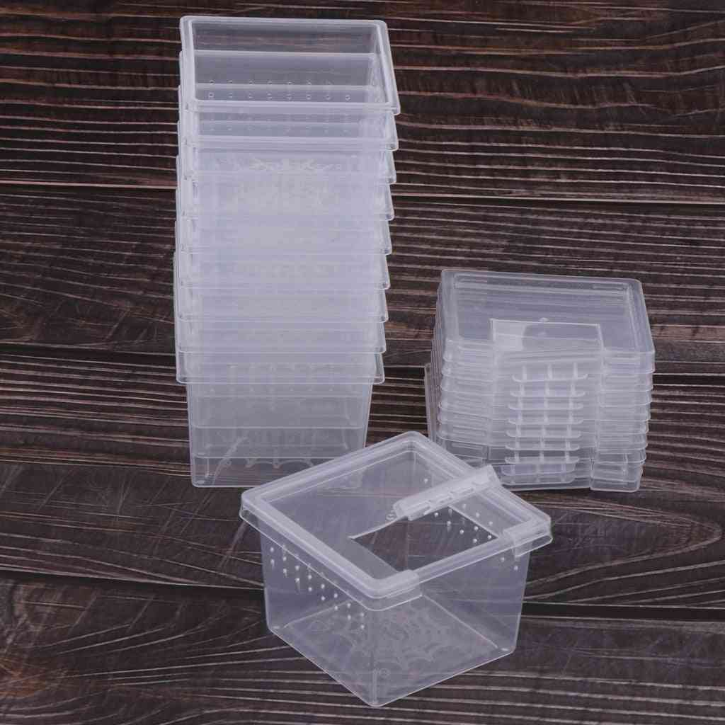 Rearing Food Feeding Box Reptile Cage Hatching Container Tank Clear Vivarium Terrarium Insect