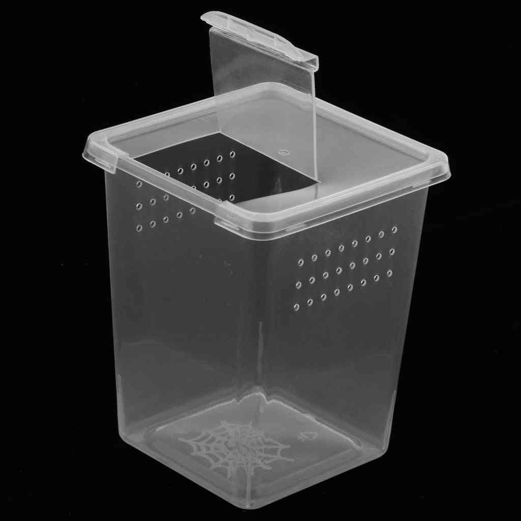 Plastic Insect Spider Habitat Feeding Box Case Container Transport Hatching Tank