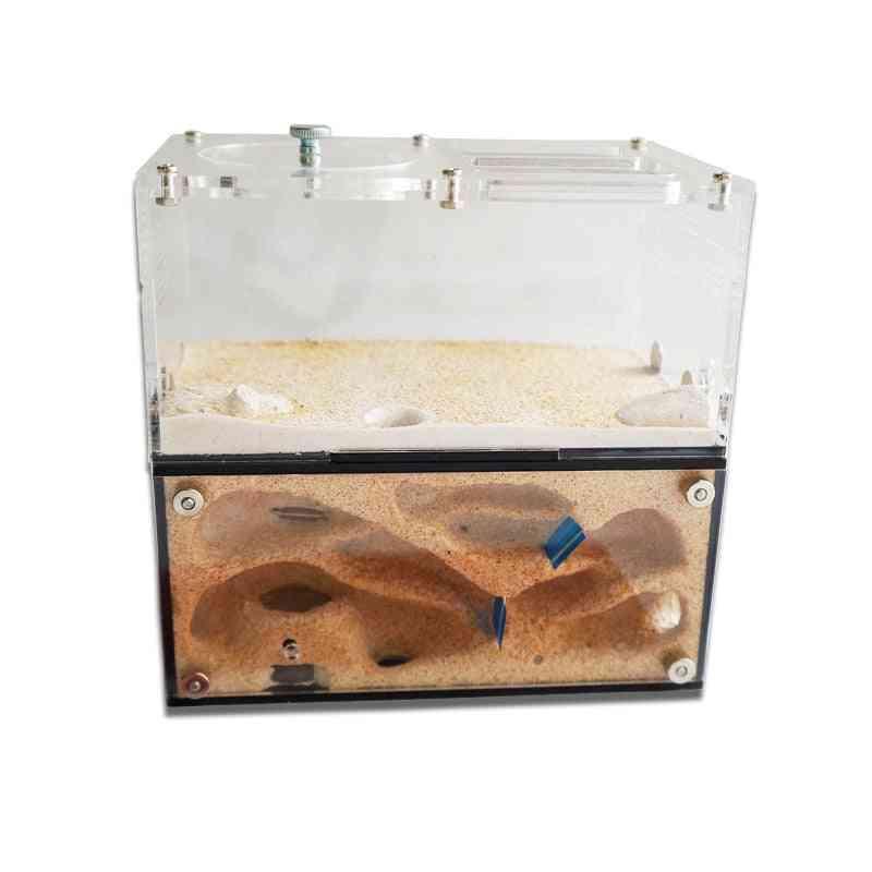Acrylic Ant Farm Spliceable Nest With Intelligent Temperature Control Concrete