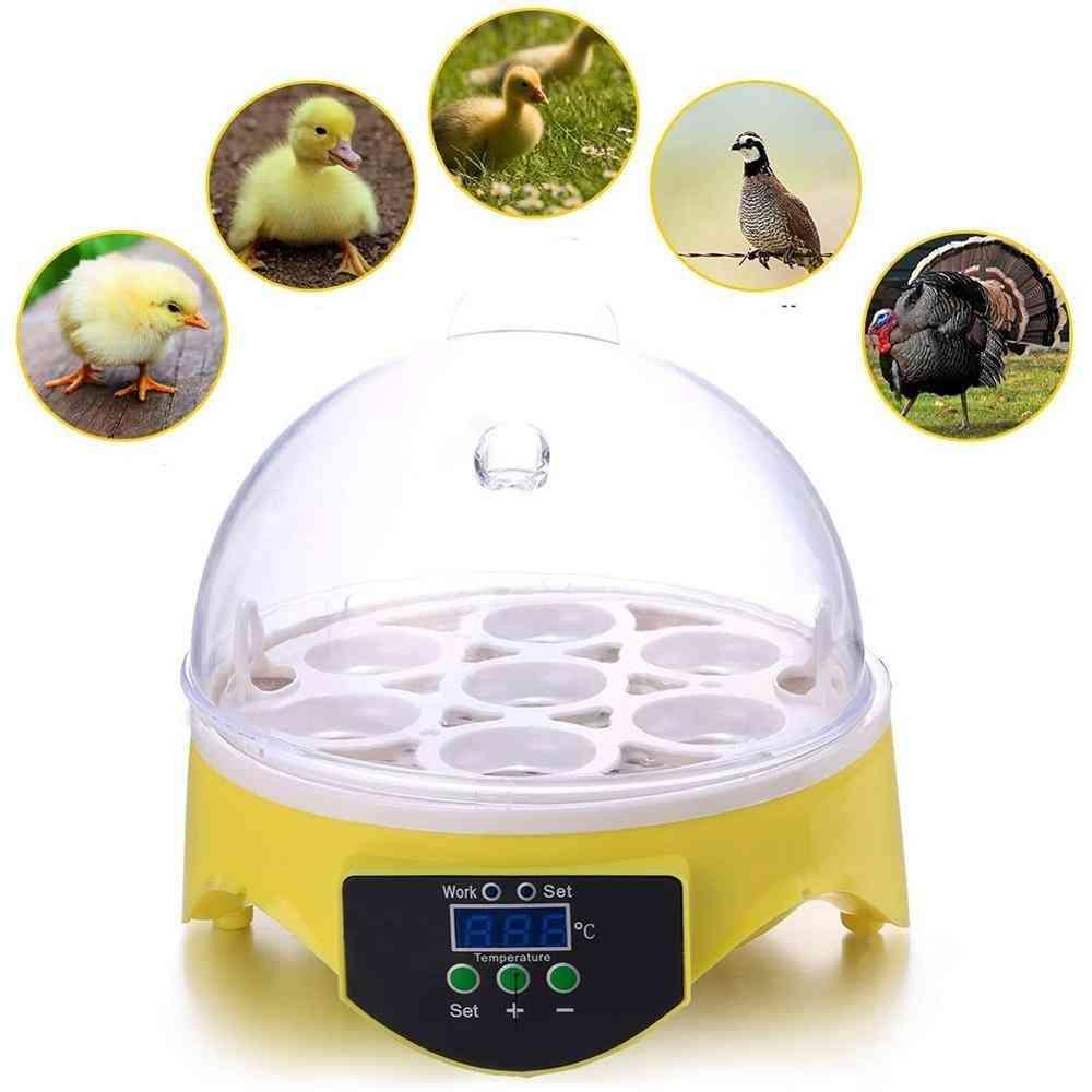Poultry Brooder Digital Temperature Hatchery Hatcher