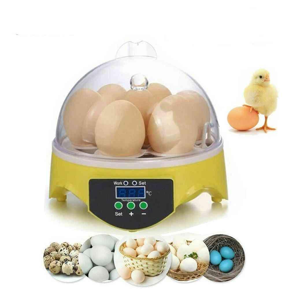 Automatic Temperature Brooder Chicken Duck Bird Hatcher