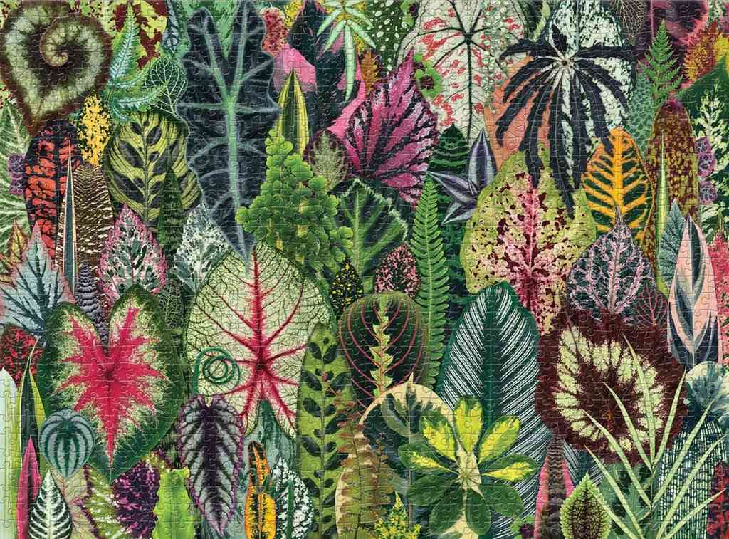 Household Forest Plants - 1000 Piece Adult Puzzle Holiday Pattern