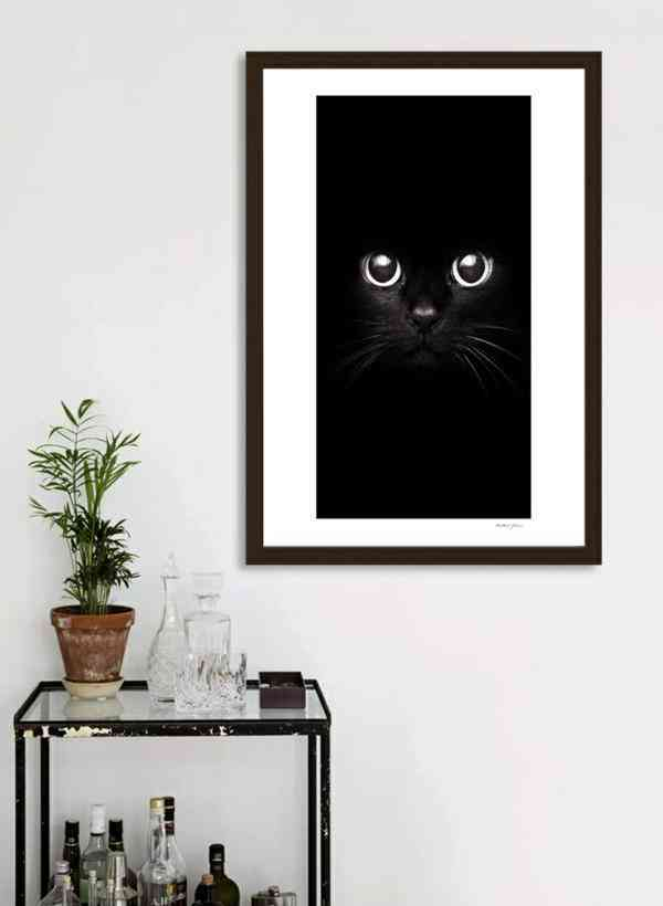 The Black Cat  Frame Painting