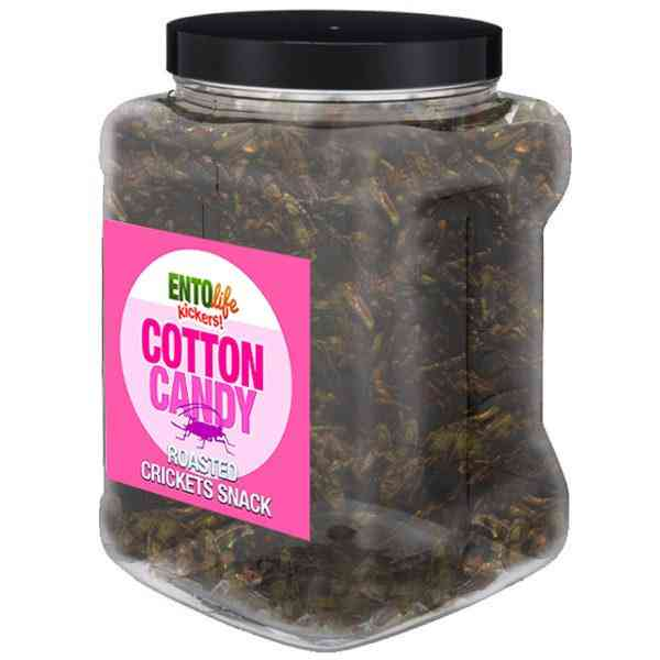 Cotton Candy Flavored Cricket Snack