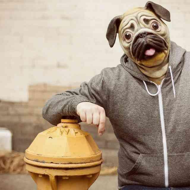 Full Head Face Covered - Pug Mask