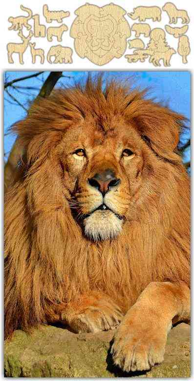 Whimsical Lion Jigsaw Puzzle