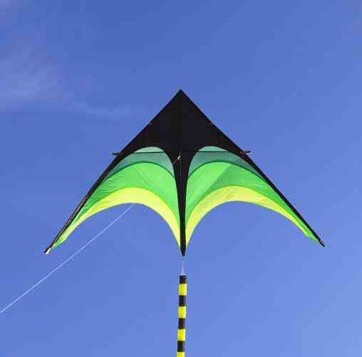 Large Delta Kites
