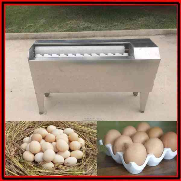 Small Chicken Duck Goose Quail Egg Washer Machine,  Egg Cleaner