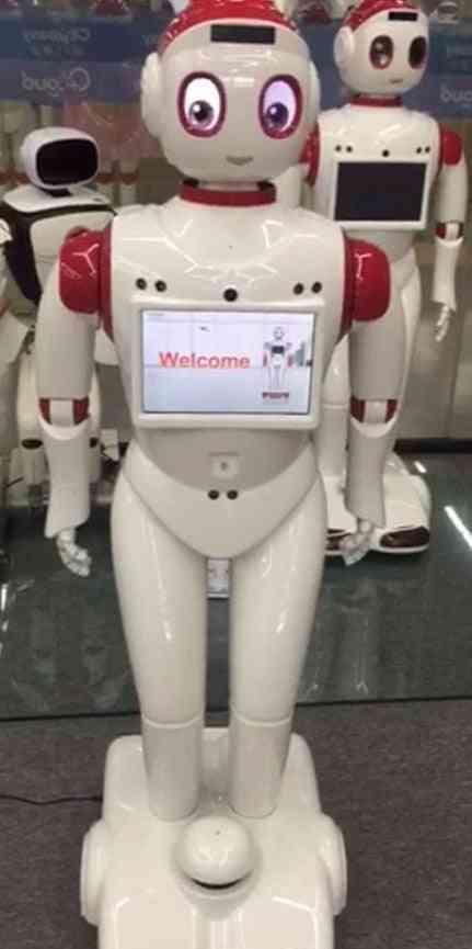 Navigation Obstacle Avoidance Smart Waitress Robot