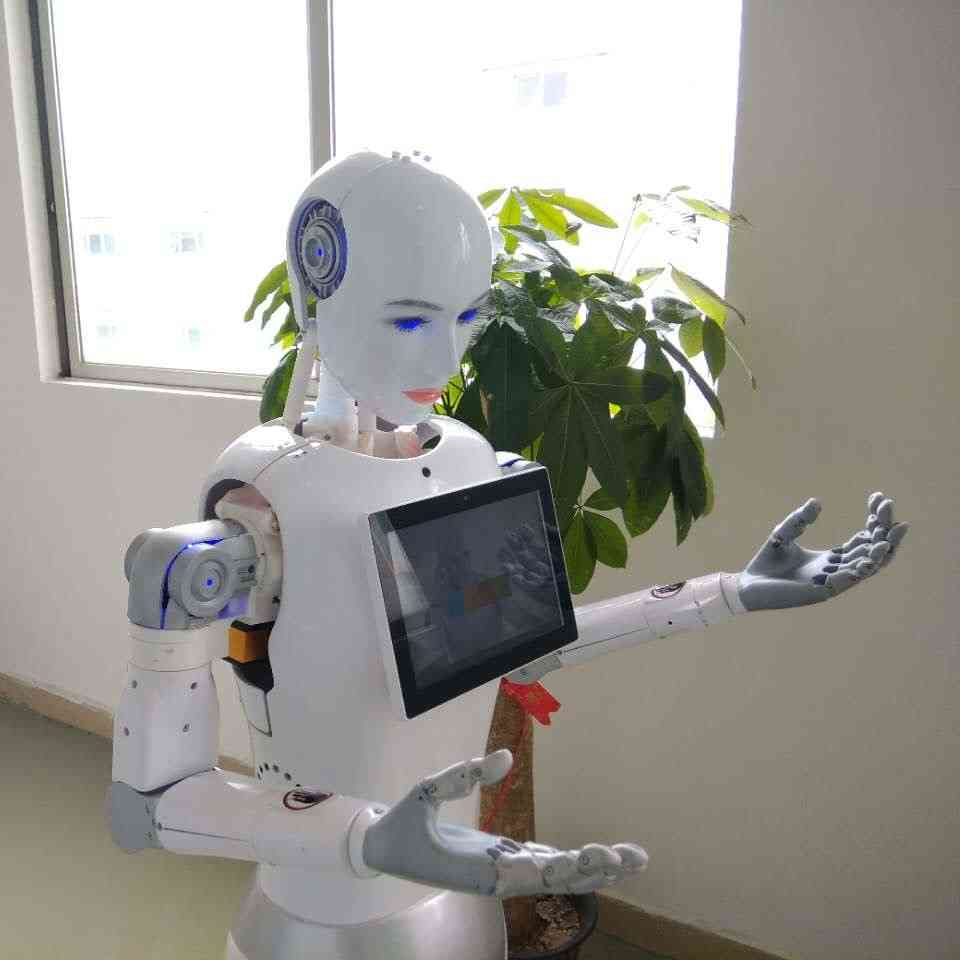 Developing Project Smart Airport Welcome Robot