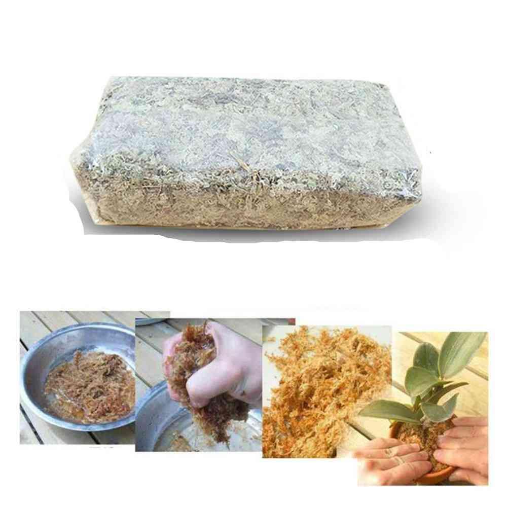 Garden Supplies Sphagnum Moss