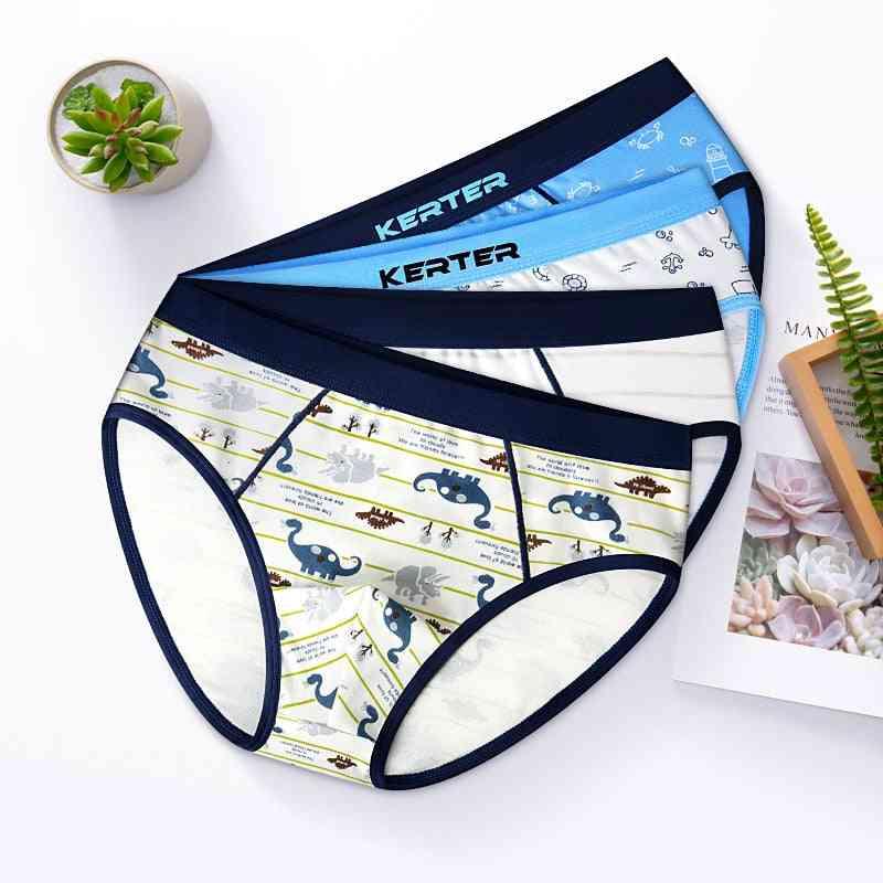 Underwear Cute Dinosaur Print Shorts