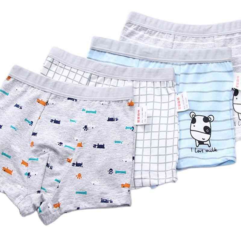 Boys Panties Cotton Boxer Shorts Young Briefs Kids  Baby Girl Clothes