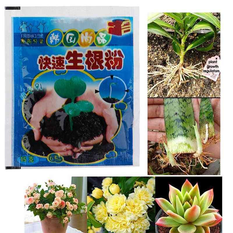 Plant Rapid Growth Root Medicinal Hormone Regulators Aid Fertilizer