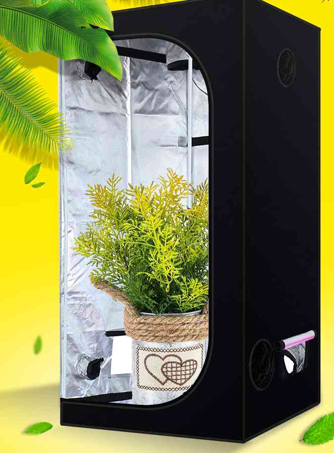 Plant Grow Tent, Box Indoor, Hydroponic Room, Home Garden For Greenhouse
