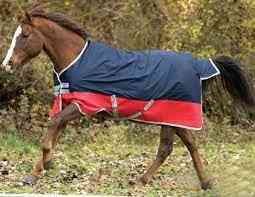 Waterproof Thick Horsecloth