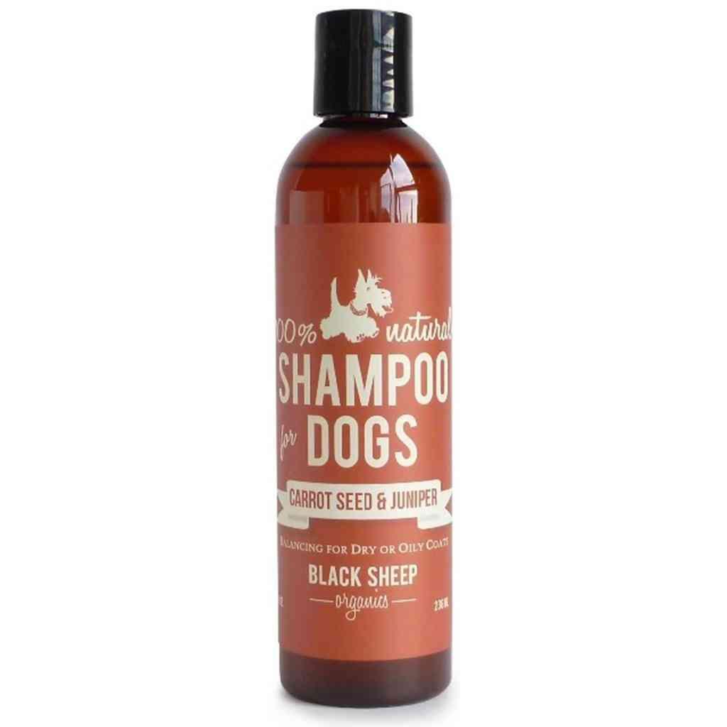 Carrot Seed & Juniper Shampoo