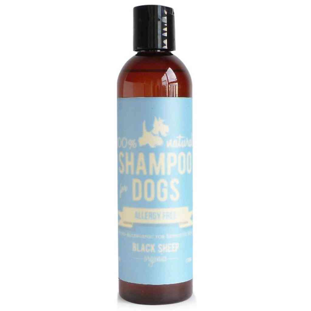 Allergy Free Shampoo