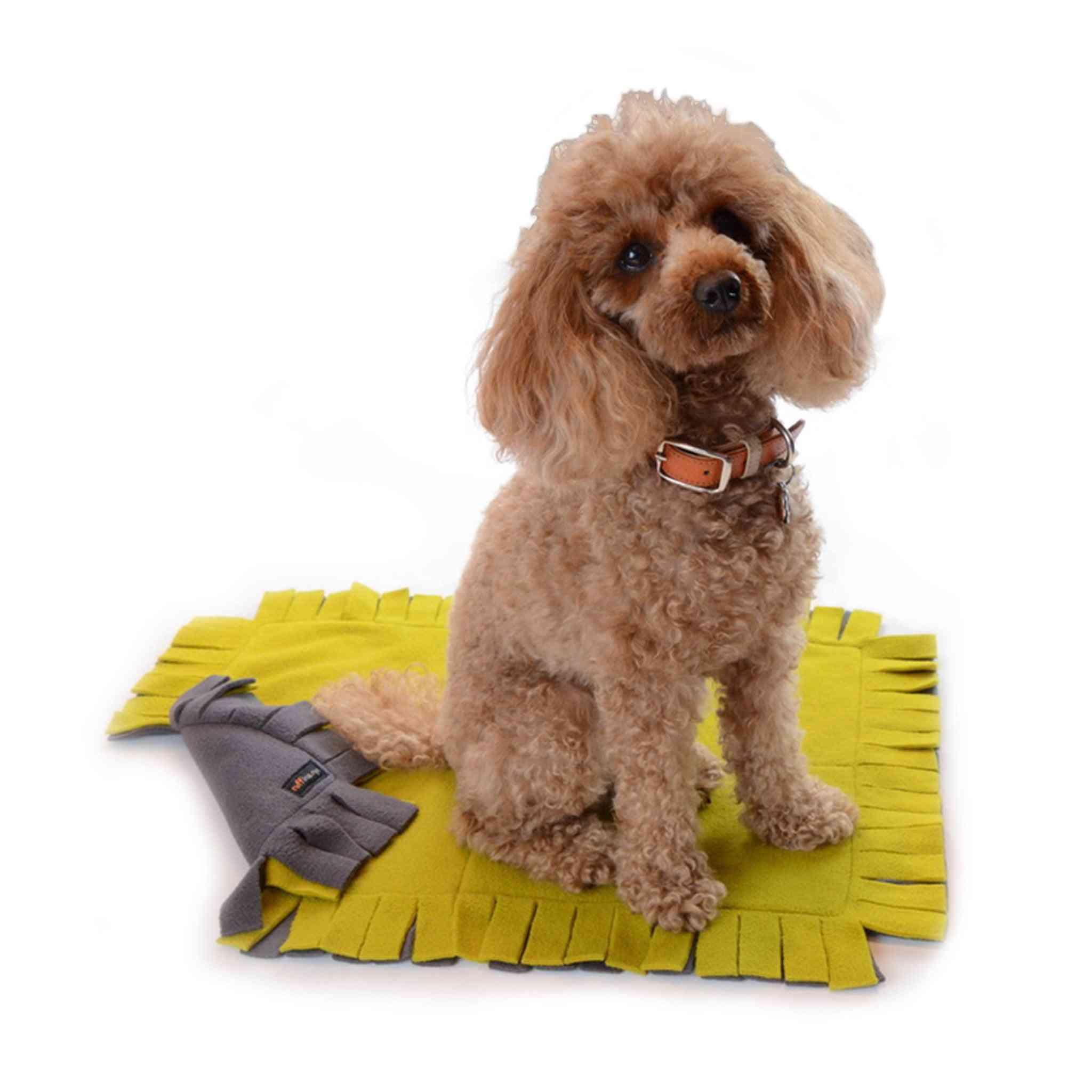Little Dog Blanket - Small