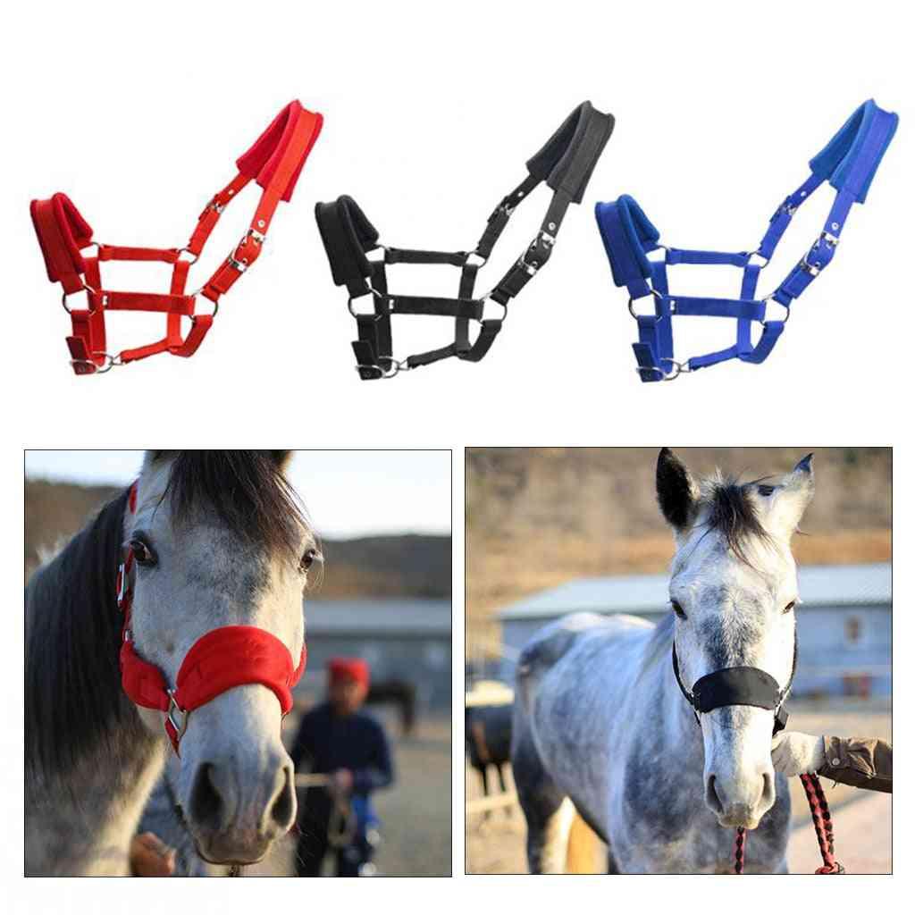Thicken Horse Halter Padded Bridle Rein Headstall Head Collar Strap