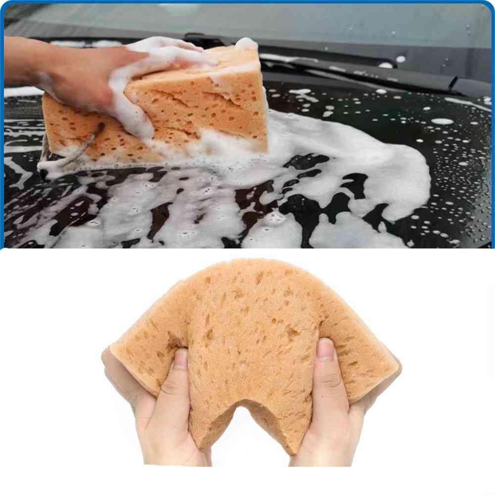 Car Wash Cleaning, Honeycomb Coral, Sponge Block Tools