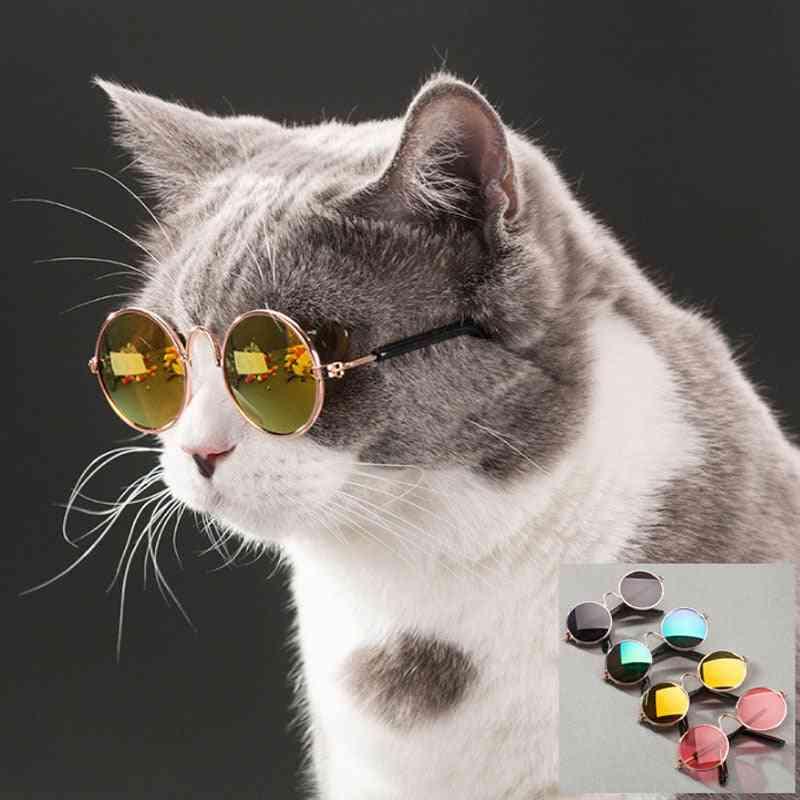 Pet Cat Glasses