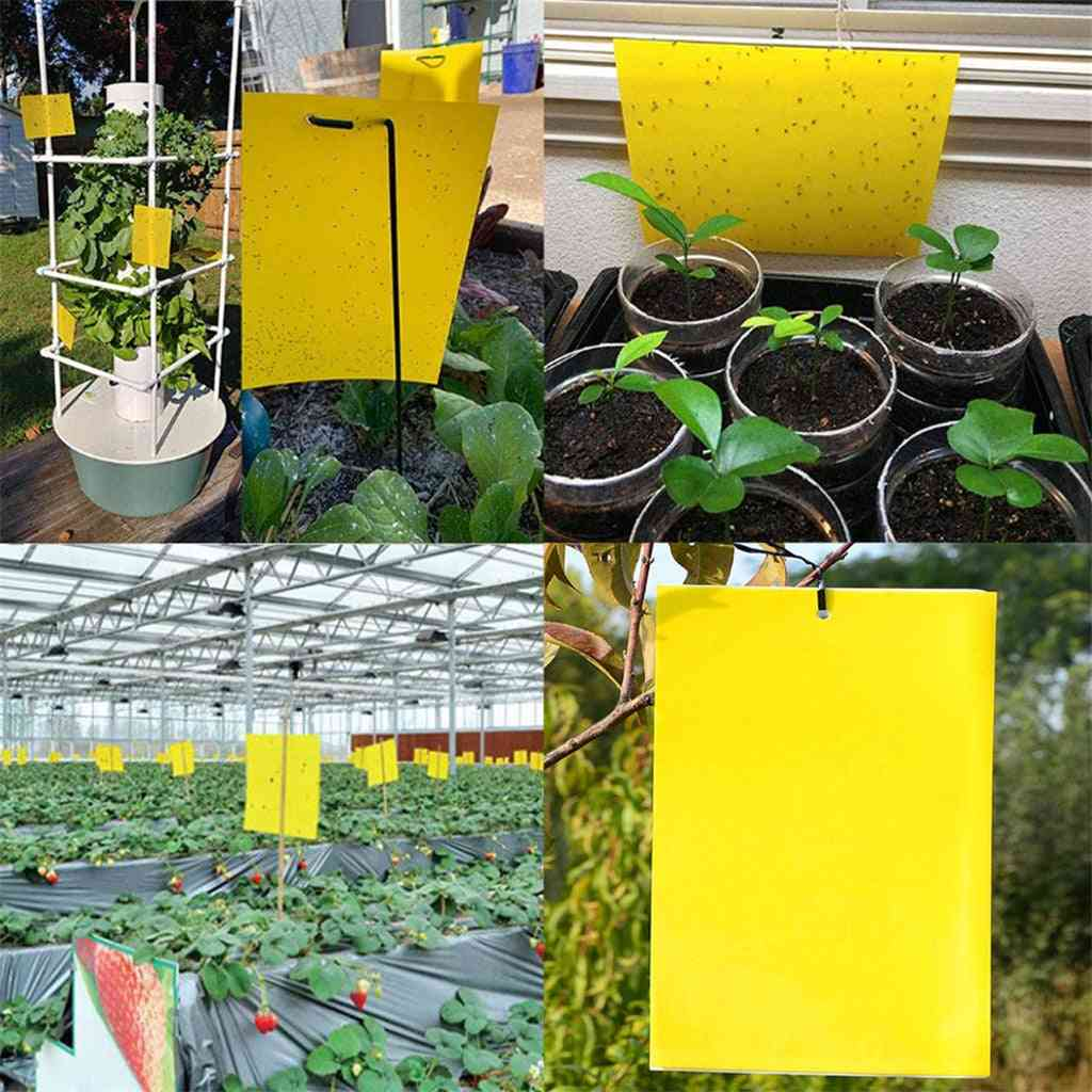 Double-sided Sticky Trap For Flying Plant Insect Gardening Tools Double-sided Shellac Pest Control Trap