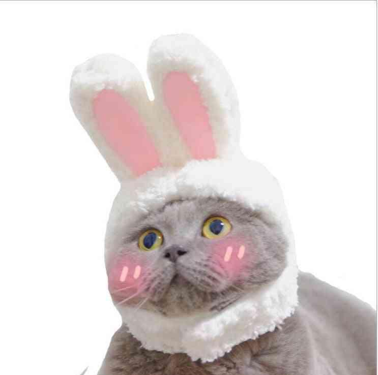 Cat Warm Rabbit Hat