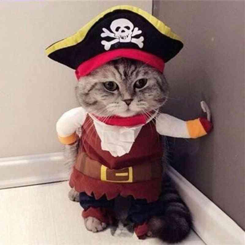 Halloween Pet Cute Comfort Costume