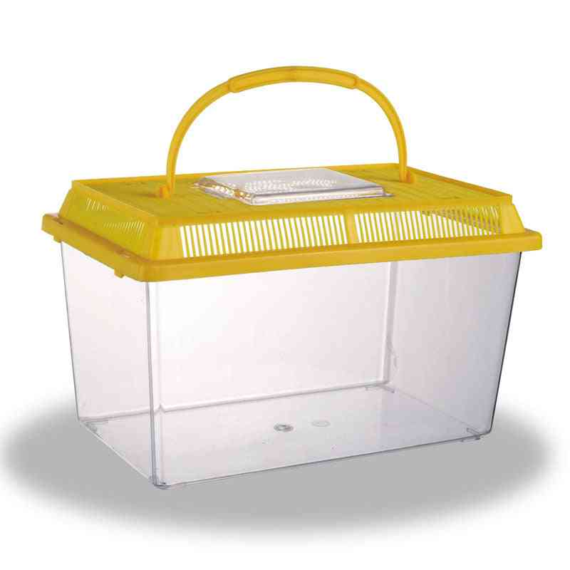 Fairy Pet Culture Insect Box