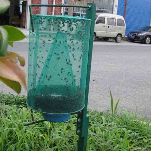 The Ranch Fly Trap