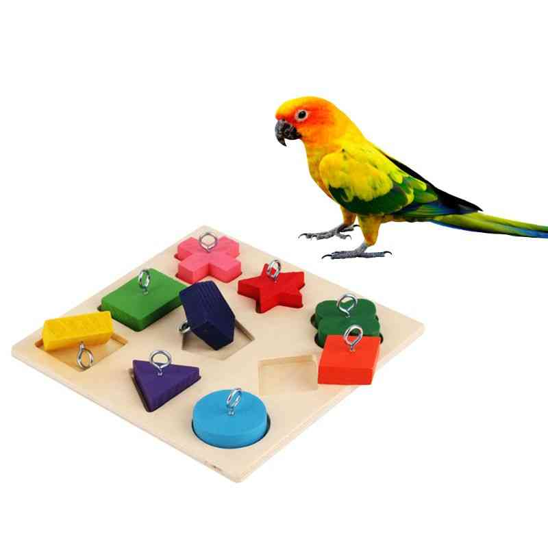 Birds Parrot Interactive Training Colorful Wooden Block