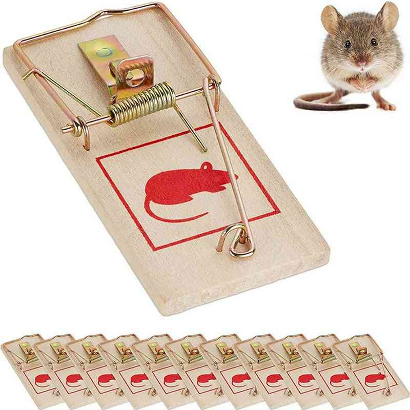 Traditional Wooden Mouse Trap