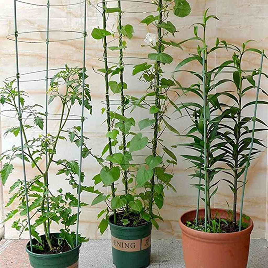Climbing Plant Support Ring Clips