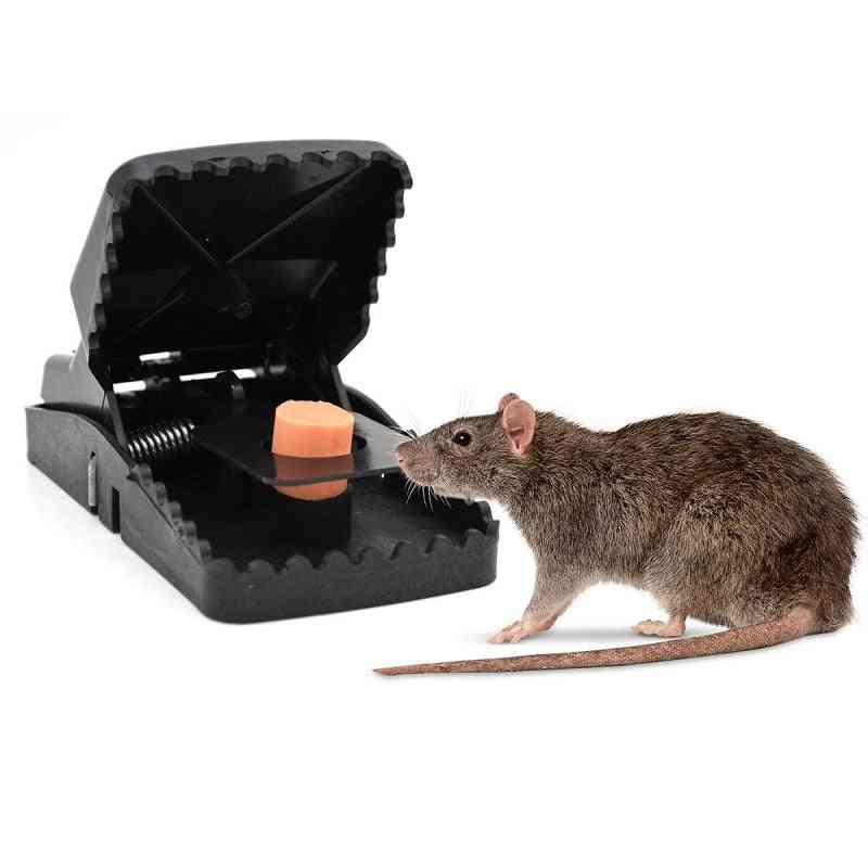 Powerful Rodent Killer Mouse Trap