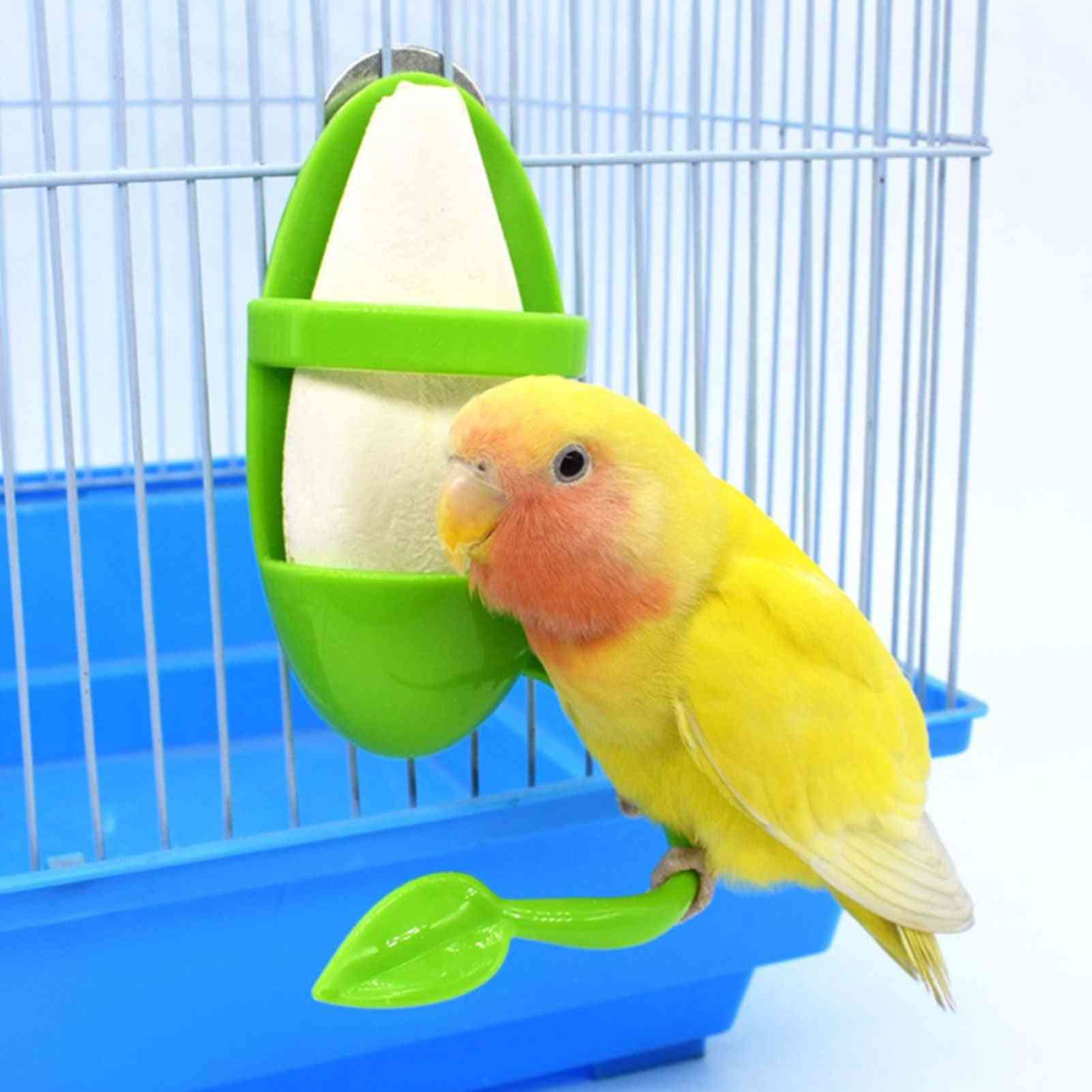 Parrot Feeder With Standing Rack Cuttlefish Bone Container Calcium Food Box