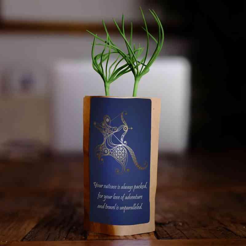 Sagittarius Zodiac Tree, We Plant 1 More Tree