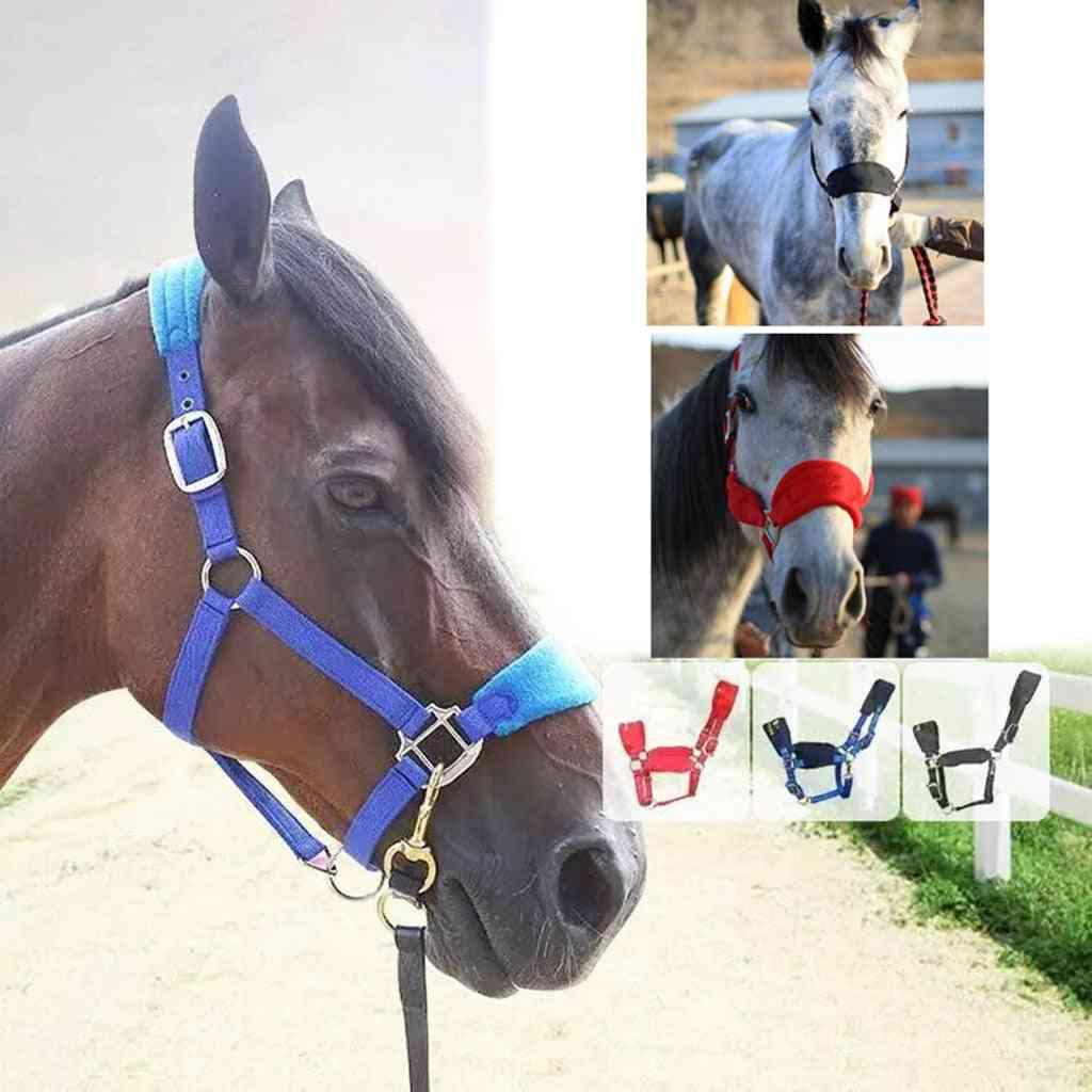 Soft Padded Pony Horse Halter Bridle Headstall