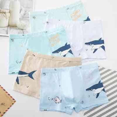 Boys Underwear, Cartoon's Shorts Panties